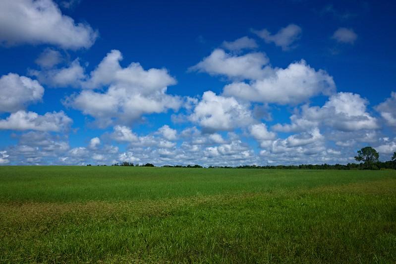 Florida Summer Sky