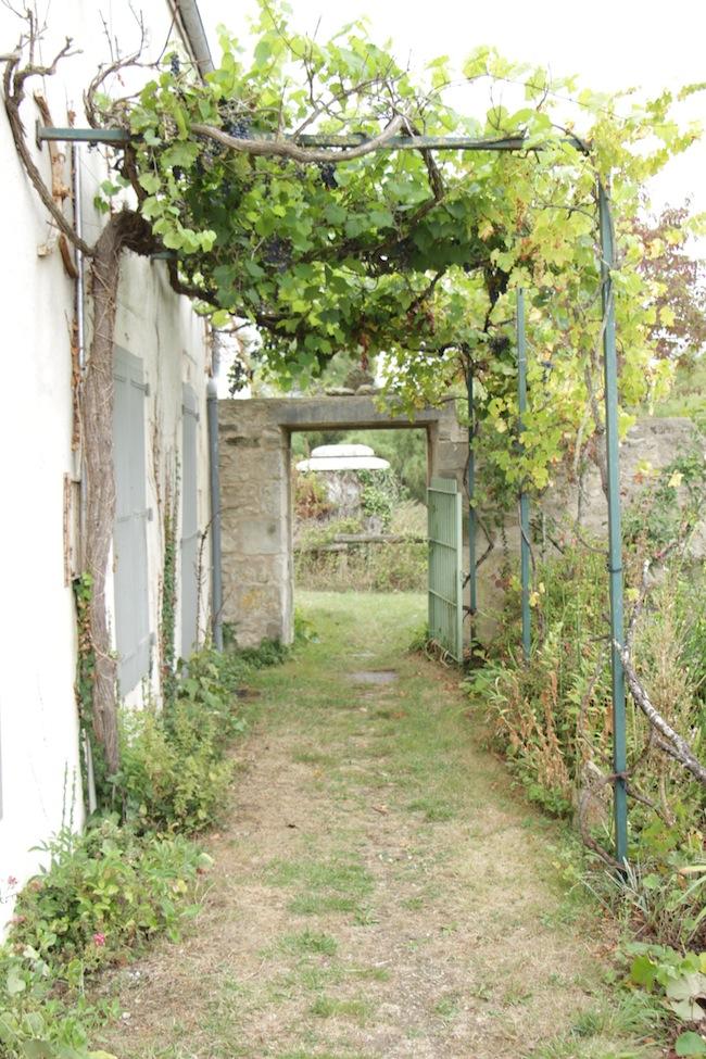 Visite_du_Relais_Nature_de_la_Moulinette_à_La_Rochelle_blog_mode_tourisme_28