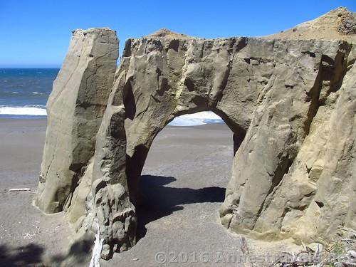 Floras Lake Beach Arch, Oregon