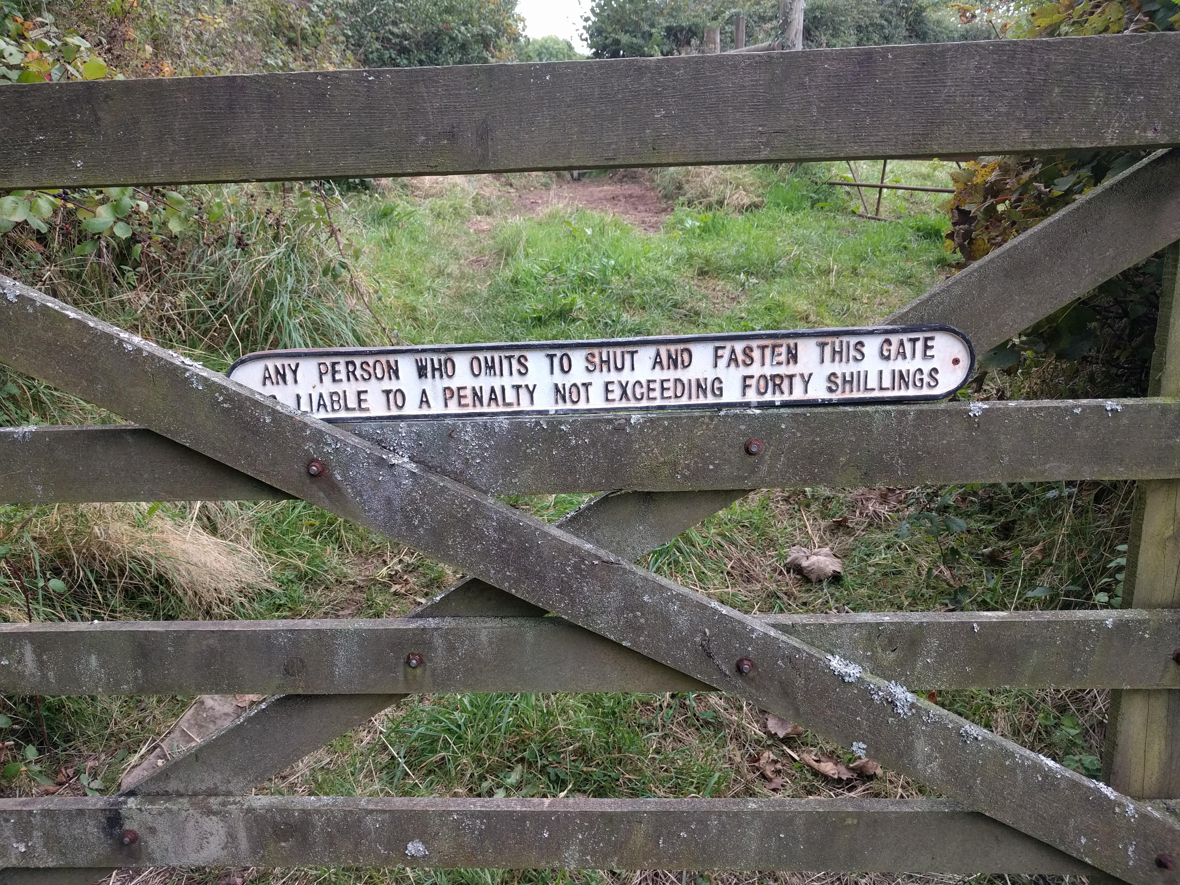 Teigncombe #sh #twomoorsway