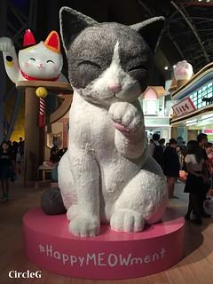 CIRCLEG 遊記 香港 旺角 朗豪坊 喵咪樂園 忌廉哥 (2)