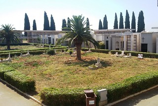 Noicattaro. Degrado al cimitero front