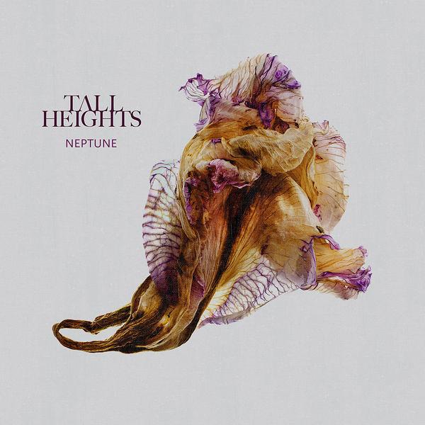 Tall Heights - Neptune