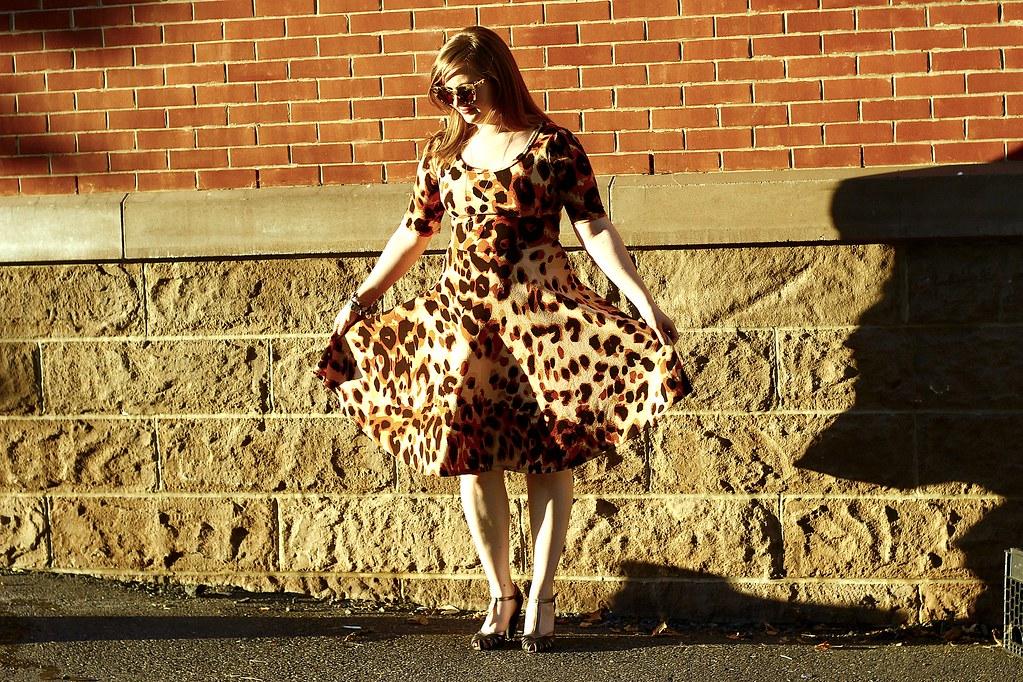 Leopard Nicole 1