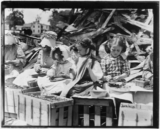 5 year old Helen and her stepsisters hulling strawberries, May 1910 | by The U.S. National Archives