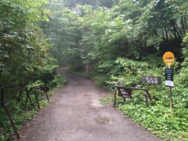鳳凰山 青木鉱泉への道