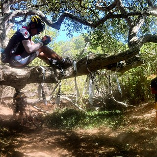 @stevenwoo and the (verbal) poop flingers at CCCX | by Slonie