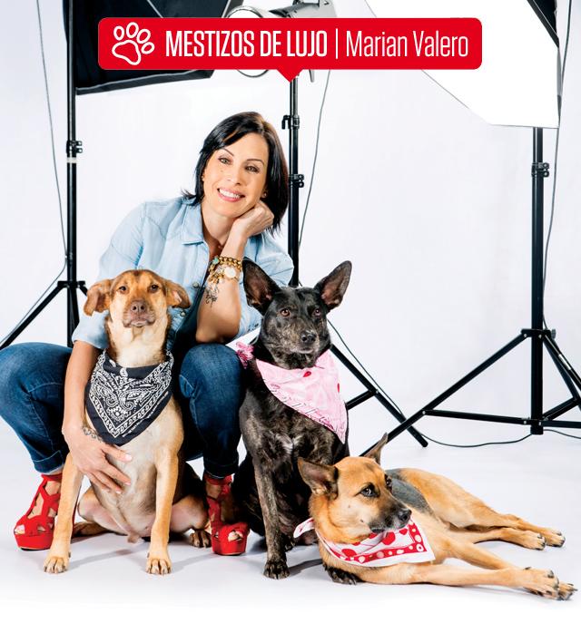 Adoptar_MarianValero_WEB