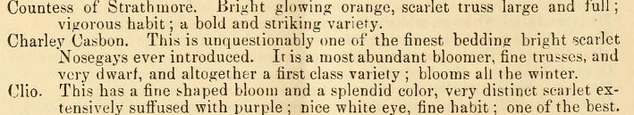 Charley Casbon flower description 1871