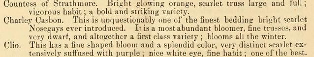Charley Casbon flower description 1871
