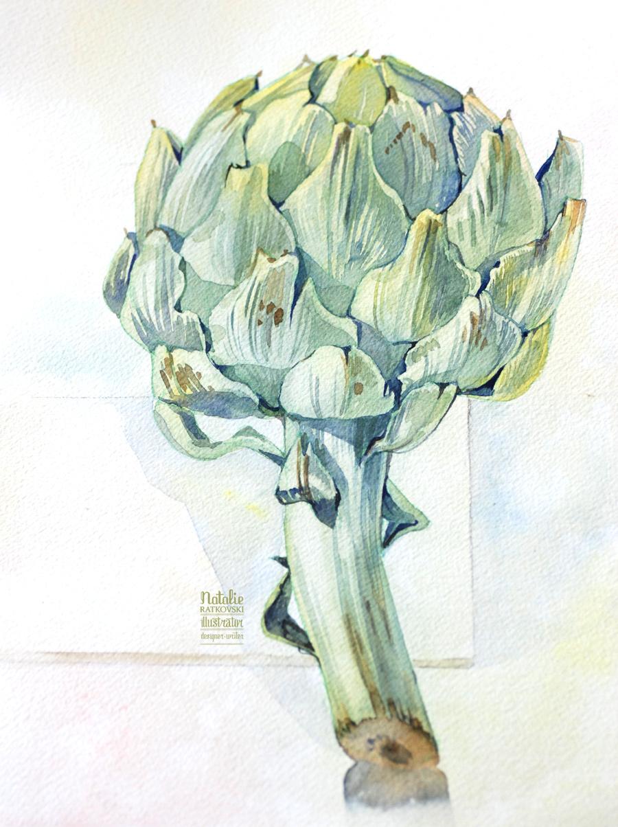 Watercolor artichoke, Natalie Ratkovski