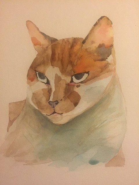 BoyKitty... Painted July 2016 but taken from us too early 4 years ago...