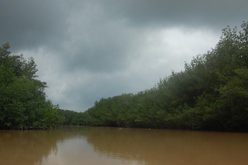 Santuario Nacional Los Manglares de Tumbes, Puerto 25