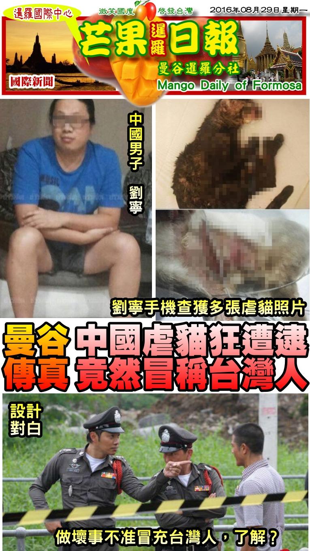 160829芒果日報--國際新聞--中國虐貓狂遭逮,竟然冒稱台灣人