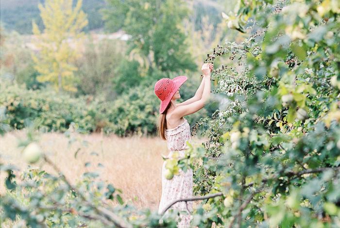 Blackberries_17