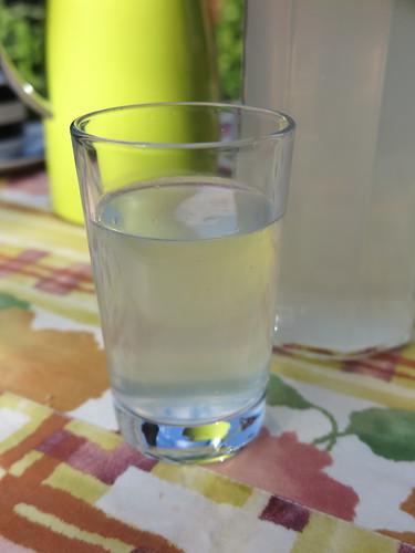 Selbstgemachte Zitronen-Minze-Limonade zur Begrüßung