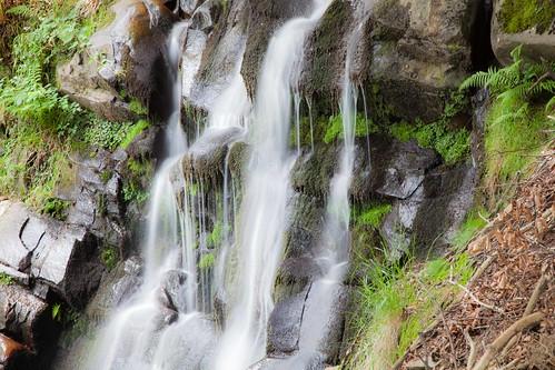 Parque Natural de #Gorbeia #DePaseoConLarri #Flickr - -7969