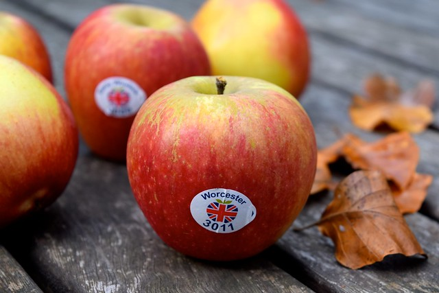 Seasonal British Apples | www.rachelphipps.com @rachelphipps