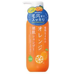 オレンジシャンプー 石澤