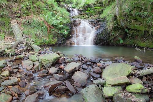 Parque Natural de #Gorbeia #DePaseoConLarri #Flickr - -7979