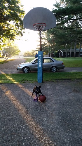 CSAR camp: trying his paw at basketball
