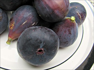 Mission figs, close up