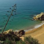 Playa de la Roca Grossa