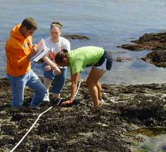 Biology Webpage Research Photos