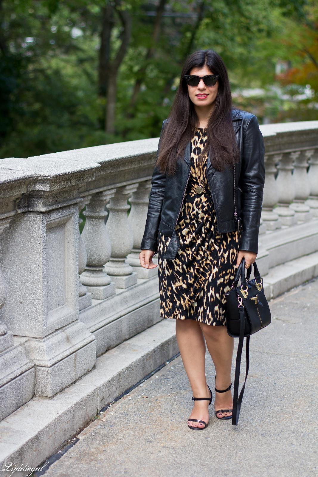 leopard dress, leather moto jacket, strappy heels.jpg
