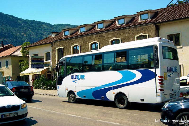 Автобус Blue line в пути