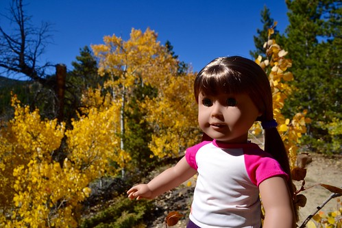 Hazel and the Aspens