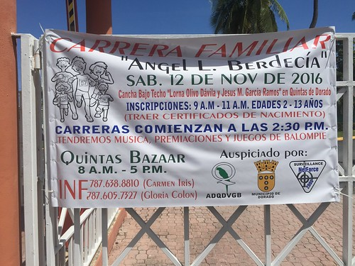 Banner Berdecia