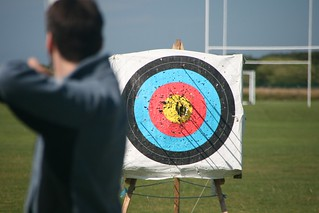 Project 366 #239: 260812 Stay On Target! | by comedy_nose