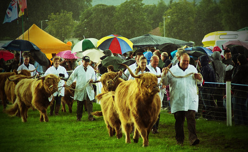 Dumfries Agricultural Show Winners Parade | by bobsfever