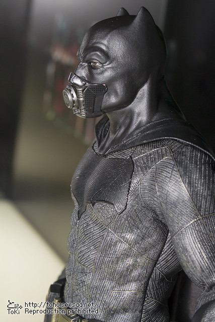 BATMAN100_HotToys_2-219