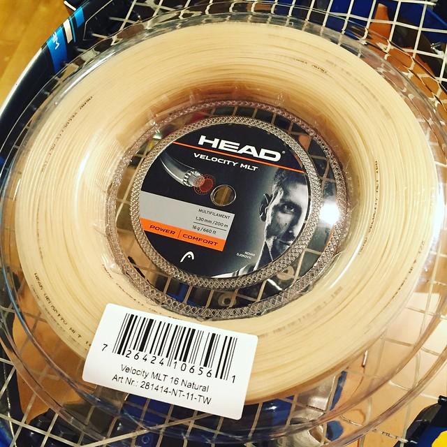 HEAD Velocity MLT 16