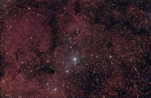 IC 1396 in Cepheus (the top half) 22 August 2012 | by BudgetAstro
