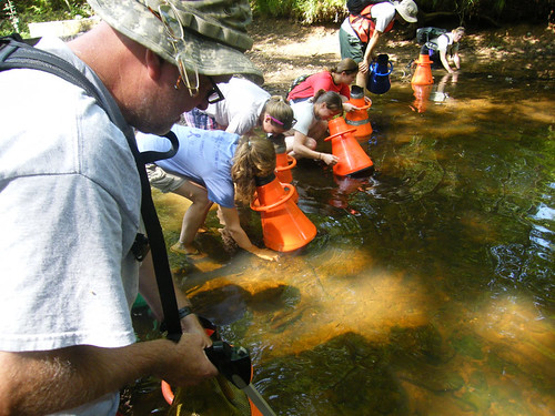 Mussel inventory in Densons Creek, Montgomery County, NC | by USFWS/Southeast