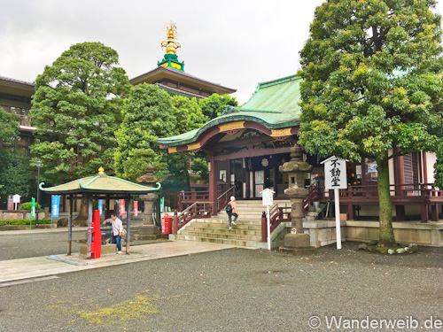 kawasakidaishi (7 von 28)