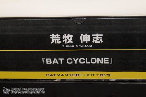BATMAN100_HotToys_2-732