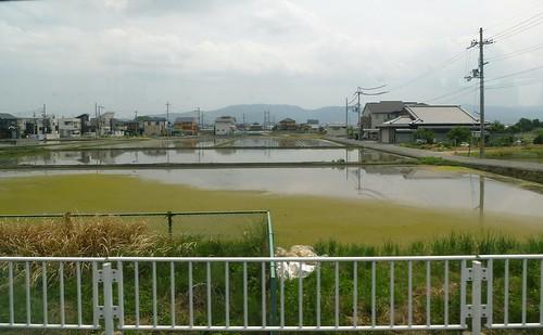 jp16-Nara-j2-balade1 (1)