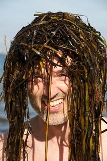 PT seaweed rasta