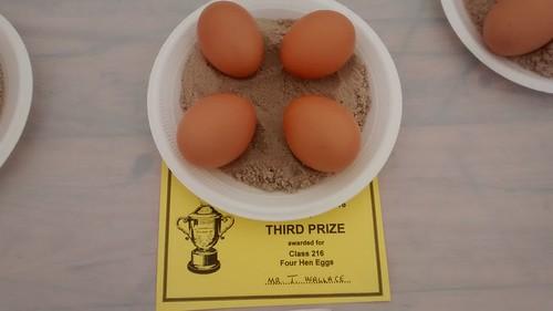 Bowes Show prizes Sept 16 (4)