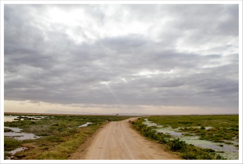 Amboseli-50