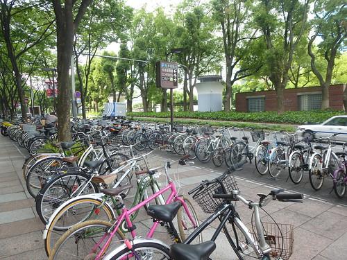 jp16-Nagoya-Château-Parc Meijon (2)