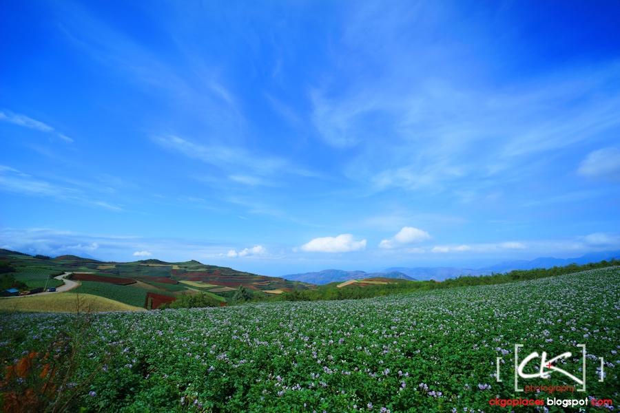 Yunnan_0045