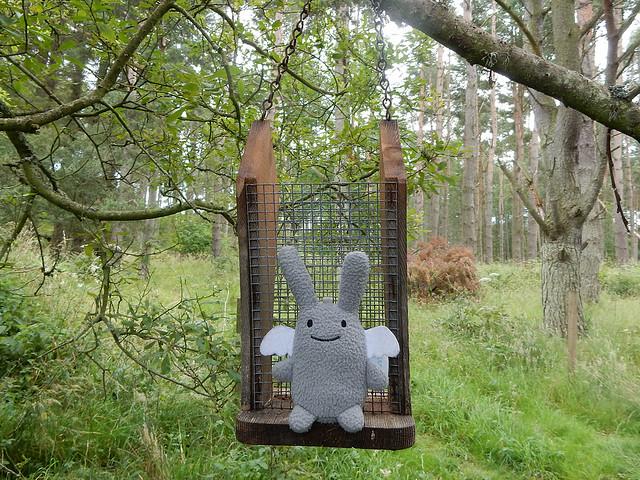 Angel Bunny at Spynie Loch