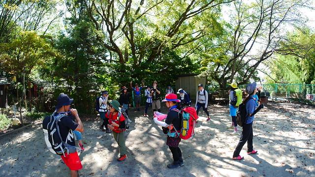 京見山 (5)