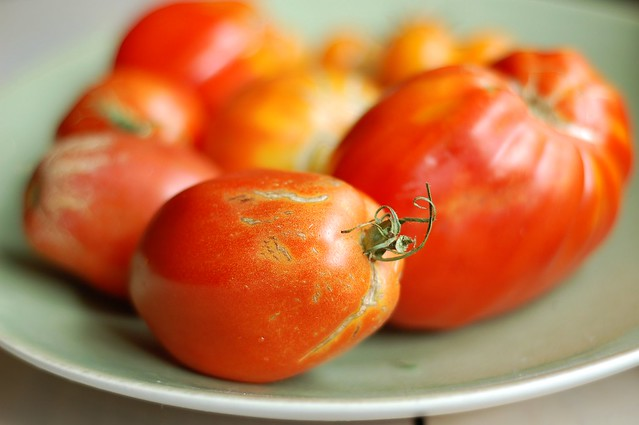 Tomatoes from the garden by Eve Fox, the Garden of Eating, copyright 2016