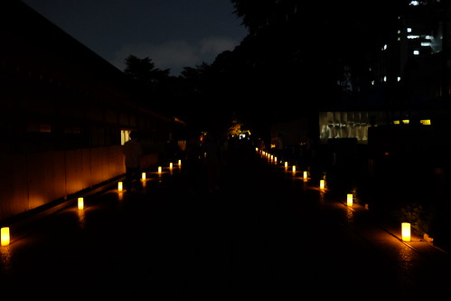 night lantern way